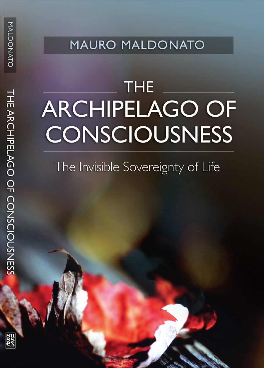 The Archipelago of Consciousne